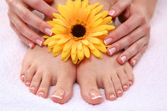 Beautiful feet with perfect spa french nail Stock Photo