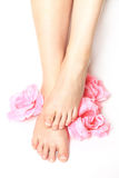 Beautiful feet with perfect spa french nail pedicure Stock Image