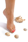Beautiful Feet, Perfect Spa Pedicure, Sea Shell Stock Photo