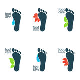 Beautiful feet vector illustration
