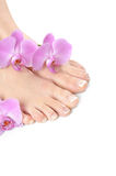 Beautiful feet with spa french nail pedicure Stock Photography