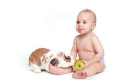 Beautiful female baby with rabbit Royalty Free Stock Image