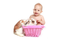 Beautiful female baby with rabbit Stock Photo