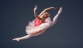 Beautiful female ballet dancer on a grey Stock Photos