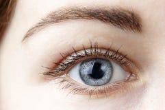 Beautiful female blue eye close-up stock photos