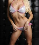 Beautiful female body Royalty Free Stock Images