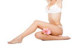 Beautiful female body Stock Image