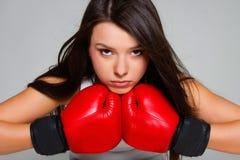 Beautiful female boxer Stock Images