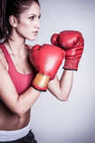 Beautiful Female Boxer Stock Photos
