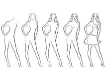 Beautiful female contour in drawing sequence Stock Images