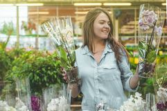 Beautiful female customer smelling colorful blooming orchids in the retail store. royalty free stock photo