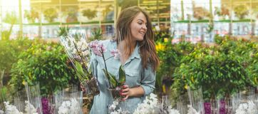 Beautiful female customer smelling colorful blooming orchids in the retail store. stock images