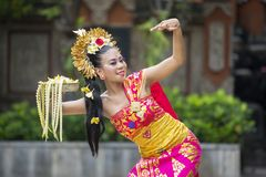Beautiful female dancer doing Pendet dances royalty free stock image