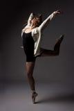 Beautiful female dancer Stock Photos