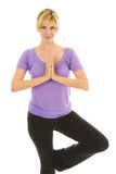 Beautiful Female Doing Yoga tree pose Royalty Free Stock Photography