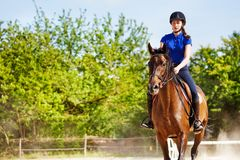 Beautiful female equestrian sits astride a horse. Outdoors at racetrack during show jumping competitions Stock Image