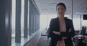 Beautiful female executive in office stock footage