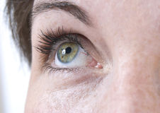 Beautiful female eye Stock Images