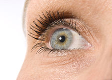 Beautiful female eye Royalty Free Stock Photography