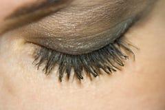 The beautiful female eye. Macro shutting Stock Image