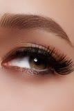 Beautiful female eye with extreme long eyelashes, black liner makeup. Perfect make-up, long lashes. Closeup fashion eyes stock image