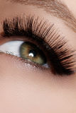 Beautiful female eye with extreme long eyelashes, black liner makeup. Perfect make-up, long lashes. Closeup fashion eyes Royalty Free Stock Photos
