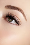 Beautiful female eye with extreme long eyelashes, black liner makeup. Perfect make-up, long lashes. Closeup fashion eyes. Beautiful macro shot of female eye with stock photography