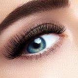Beautiful Female Eye With Extreme Long Eyelashes, Black Liner Makeup. Perfect Make-up, Long Lashes. Closeup Fashion Eyes Stock Photography