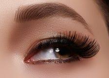 Free Beautiful Female Eye With Extreme Long Eyelashes, Black Liner Makeup. Perfect Make-up, Long Lashes. Closeup Fashion Eyes Stock Photography - 87506152