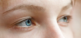 Beautiful female eyes. Close-up of Beautiful blue eyes of young girl royalty free stock photos