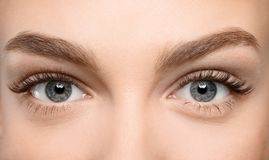 Beautiful female eyes with long eyelashes,. Closeup Royalty Free Stock Photography