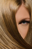 Beautiful female face and straight hair Royalty Free Stock Photography