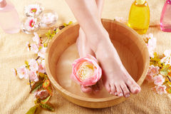 Beautiful female feet Stock Photos