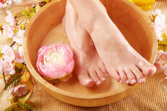 Beautiful female feet Royalty Free Stock Image