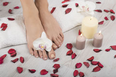 Beautiful female feet and hands with french manicure on white towel. Spa, foot care. Female feet and hands with french manicure on white towel with orchid Stock Image