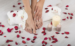 Beautiful female feet and hands with french manicure on white towel. Spa, foot care. Female feet and hands with french manicure on white towel with orchid Royalty Free Stock Images
