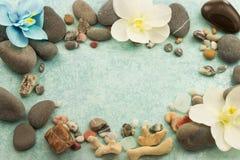Beautiful female feet and hands, spa salon, pedicure and manicure procedure Stock Image