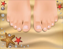Beautiful female feet with a pedicure Stock Photography