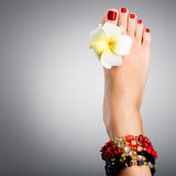 Beautiful female feet with red pedicure Royalty Free Stock Photos