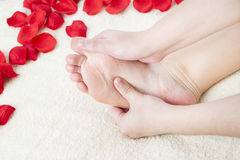 Beautiful female feet and rose petals Royalty Free Stock Images