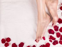 Beautiful female feet and rose petals Spa and skin care concept stock photo