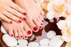 Beautiful female feet at spa salon. Stock Photos