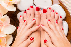 Beautiful female feet at spa salon on pedicure procedure Royalty Free Stock Photo