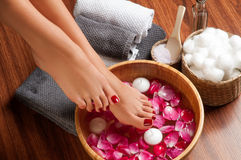 Beautiful female feet at spa salon on pedicure procedure. Closeup photo of a female feet at spa salon on pedicure procedure. Female legs in water decoration the stock image