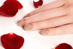 Beautiful female finger nails with natural  nail closeup on peta Stock Images