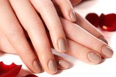 Beautiful female finger nails with natural nail closeup on petal Royalty Free Stock Photos