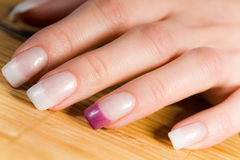 Beautiful female fingernails Royalty Free Stock Photography