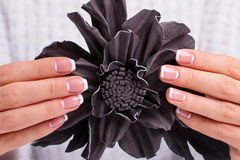 Beautiful female fingers hold the decorative leather flower. Stock Photography