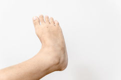 Beautiful female a foot and a heel Royalty Free Stock Image