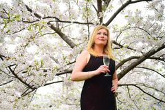 Beautiful female with glass of champagne in the sakura garden Royalty Free Stock Images